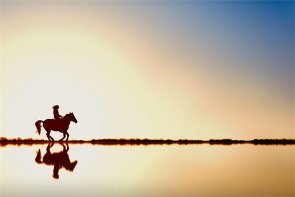 【꿈해몽】꿈속에서 달리는 말의 의미와 상징