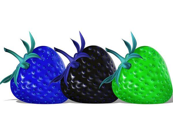 꿈에서 검은 딸기는 무엇을 의미합니까? 꿈의 점