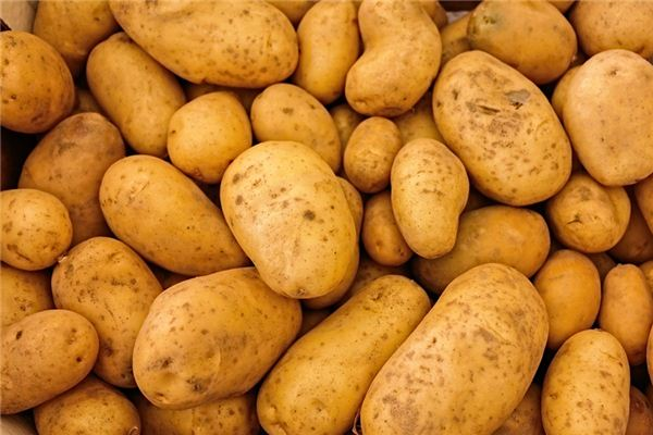 【꿈해몽】감자 꿈의 의미와 해석