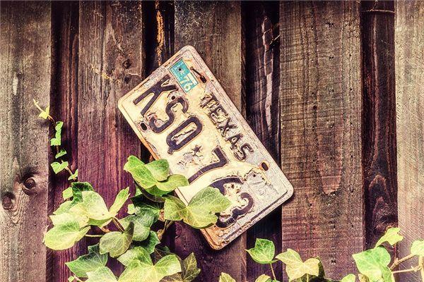 【꿈해몽】꿈속에서 번호판 번호의 의미와 상징